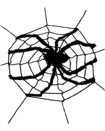 Large Spider Web With Spider