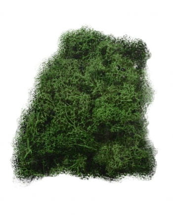 Halloween decoration moss 100 g