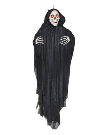 Head rotating Phantom Skeleton