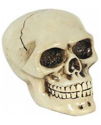 Shift Knob Skull