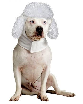 Hound Hoodie Poodle