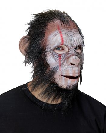 Julius War Ape Full Head Mask