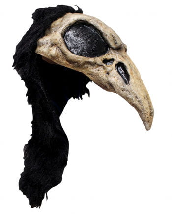 Crow Helmet Mask