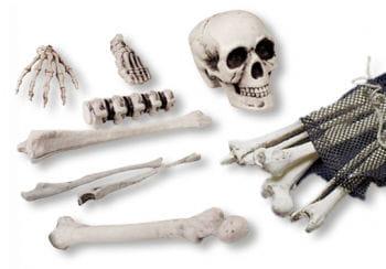 Plastic bone 18 pieces