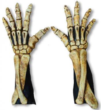 Long Skeleton Gloves Bone Coloured