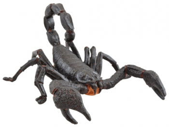 Life-Size Black Scorpion