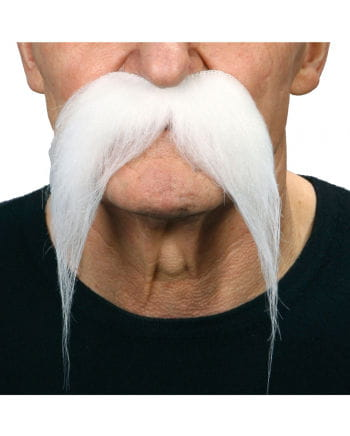 Mexicans Beard white