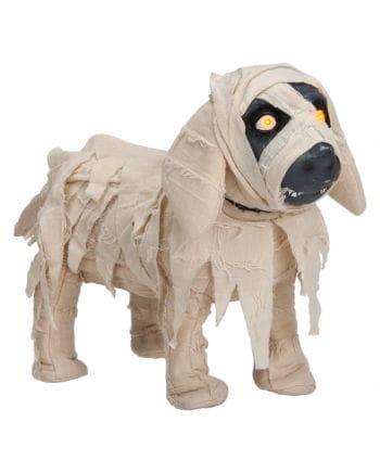 Mumifizierter Hund Animatronic