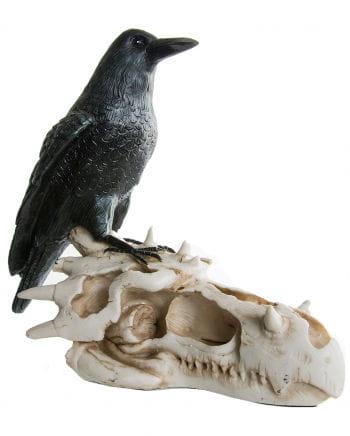 Raven on dragon skull