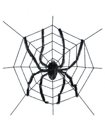 Giant spider on the web