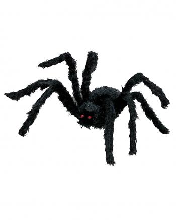Schwarze Spinne klein