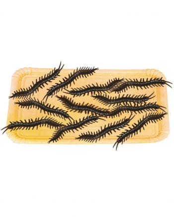 Millipedes Pack Of 12