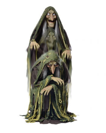 Talking Swamp Witch Standing Up With LED Eyes