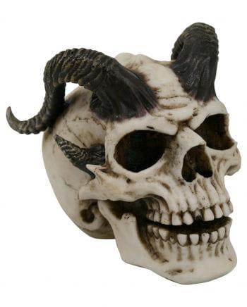 Teufelsschädel mit Hörnern