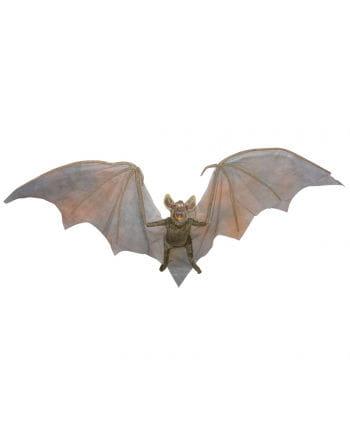 Vampire bat 90 cm