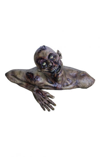 Verrotteter Grab Zombie