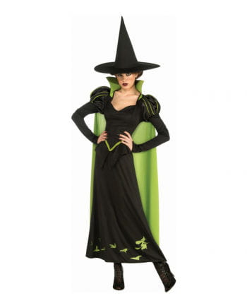 Wicked Witch Kostüm