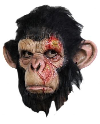 Infizierte Affenmaske