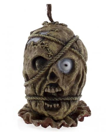 Severed Mummies Head