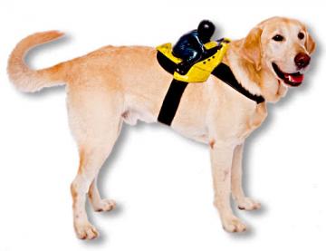 Biker Hundekostüm
