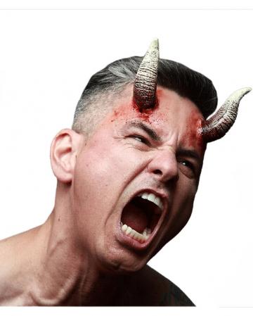Gray demons horns applique