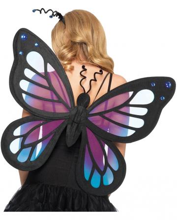 Dark Mystery Schmetterlings Flügel
