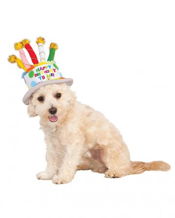 Geburtstagskuchen Hut für Hunde