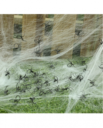Mini Spinnen im Beutel 50 St.