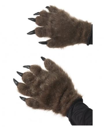 Fur paws Brown
