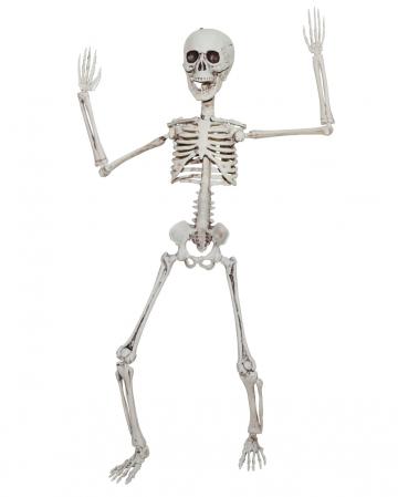 Positionable Skeleton 50cm