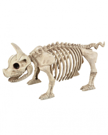 Piggy Skeleton