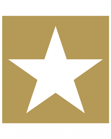 Servietten Stern gold-weiß 20 St.