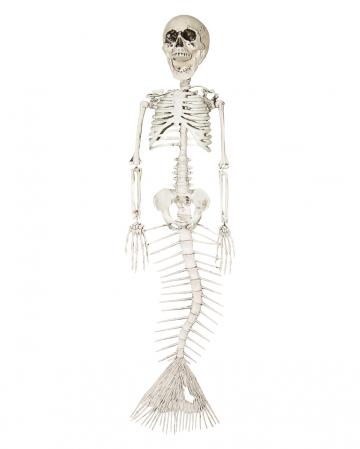 Skelettierte Meerjungfrau 45cm