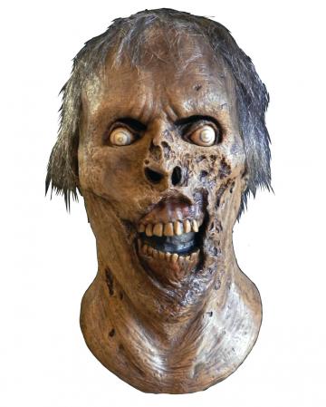 The Walking Dead Skeleton Walker Mask