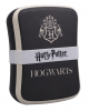 Harry Potter Hogwarts Crest Lunchbox