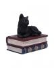 Schwarze Katze auf Zauberbücher Box 11,7cm