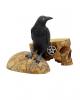 Salem Totenschädel mit Rabe