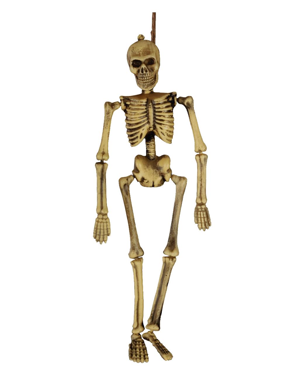 Bewegliches Mini Skelett Halloween Deko Horror Shop Com