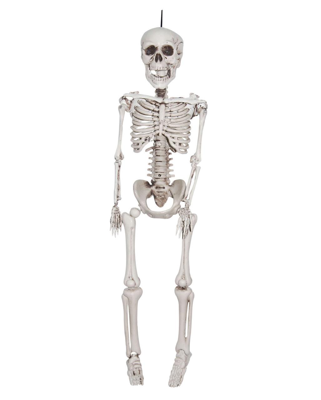 Skelett Hangefigur 30 Cm Halloween Deko Horror Shop Com