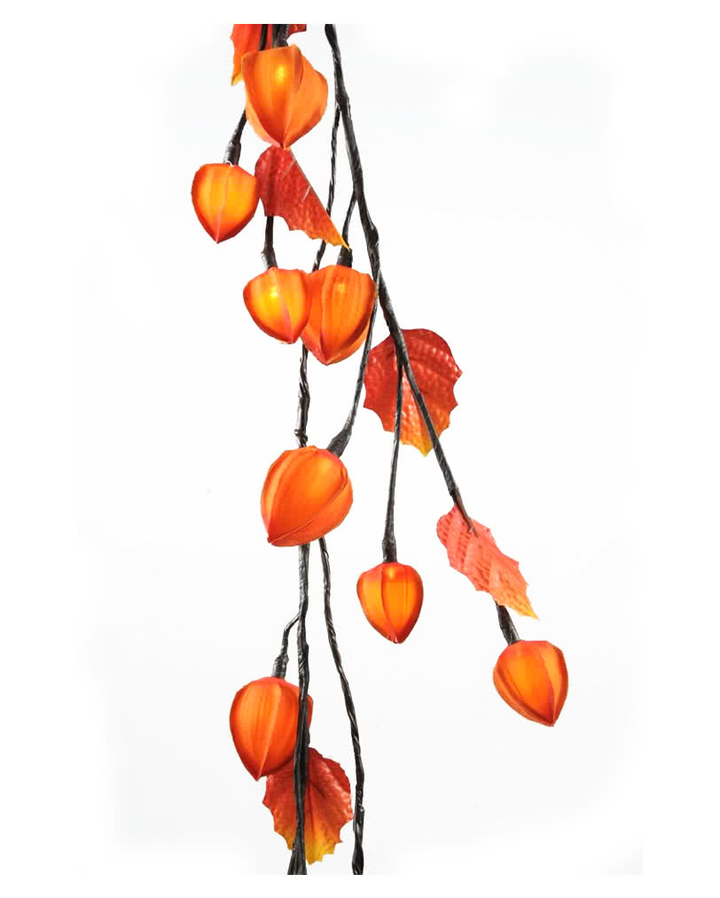led physalis garland decorative light chain in natural look horror. Black Bedroom Furniture Sets. Home Design Ideas