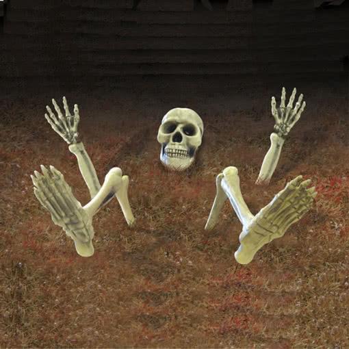 skelett dekoration f r den garten halloween. Black Bedroom Furniture Sets. Home Design Ideas